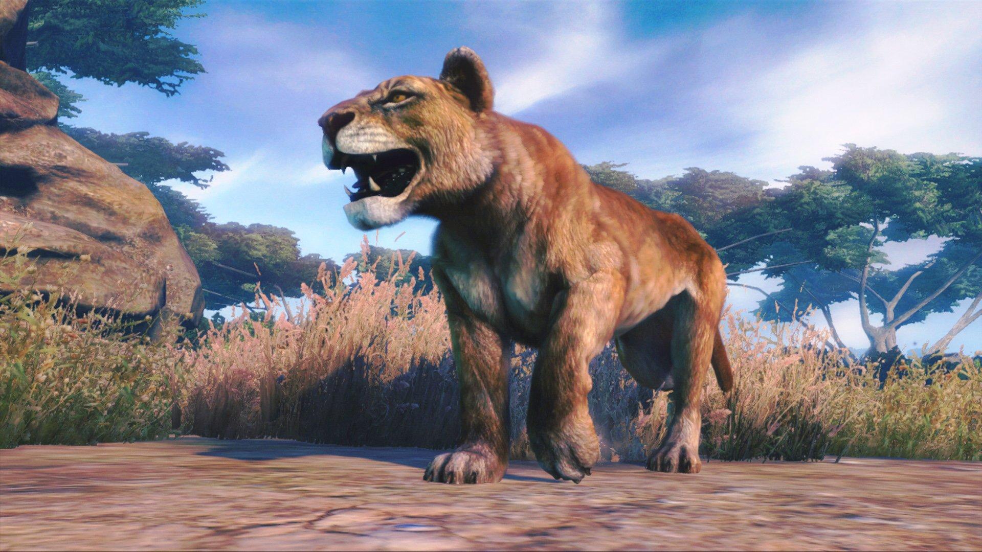 CAA_Lioness